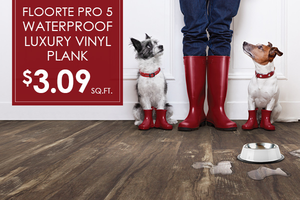 Floors Express Abbey Carpet Flooring On Sale Now In